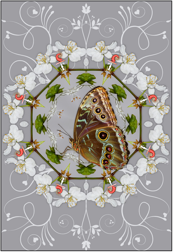 VISUAL ELEMENT Art Inspired By Nature Created By Susan