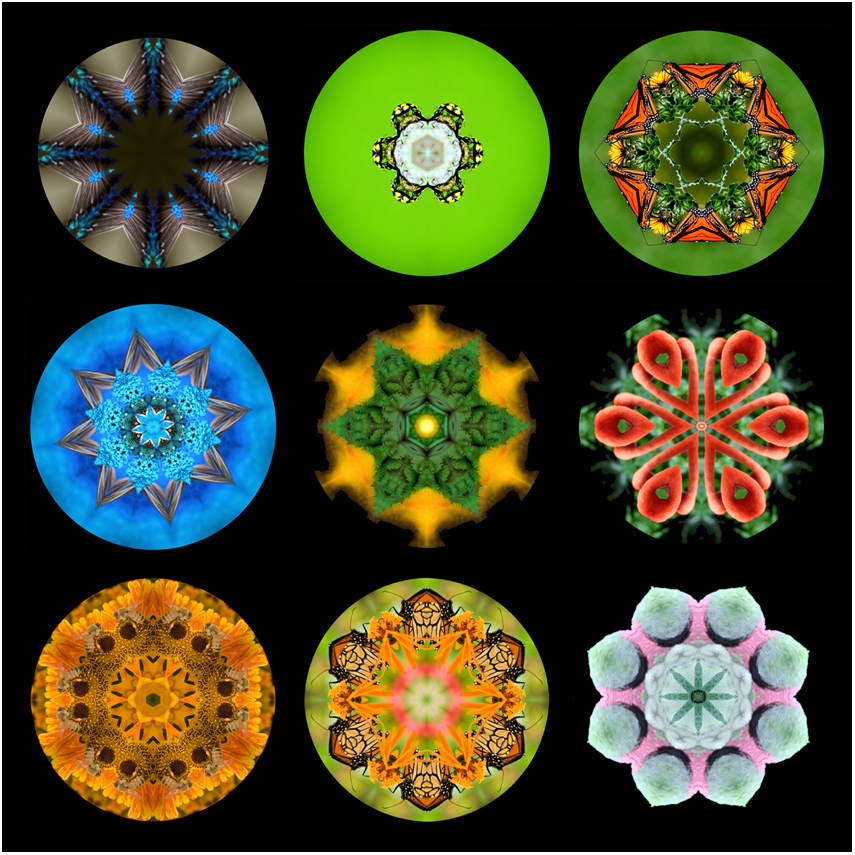seasons summer mandala art, new zealand, Susan Cleaver, Artist, mozaics, mandalas, collage, stock photos, digital art and more, experiencing the visual element of nature through photography