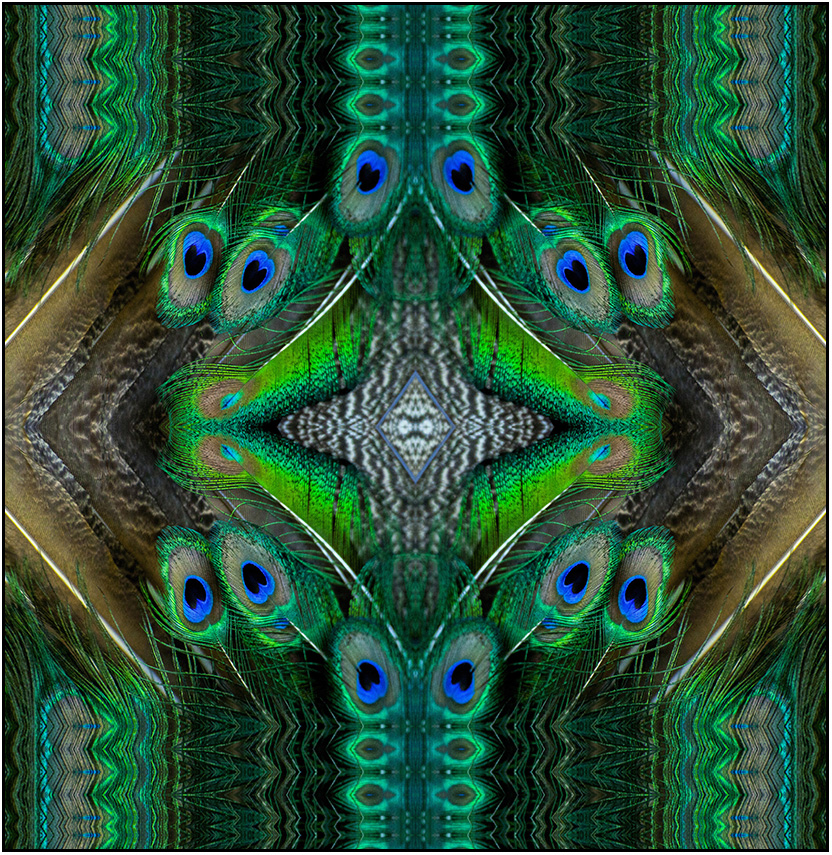 textile peacock feather graphic art, Susan Cleaver, Artist, mozaics, mandalas, collage, stock photos, digital art and more, experiencing the visual element of nature through photography