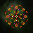 green, moody art, tropical flowers, insects, floral mandala, flower mandala, flowers, floral art, photo artist, image manipulation, photo art, susan cleaver artist, mandala, moziac, collage art